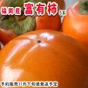 名産地!福岡産富有柿5玉【常温便】 - 南国フルーツ-果実村TOKIO