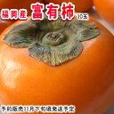 名産地!福岡産富有柿10玉【常温便】 - 南国フルーツ-果実村TOKIO