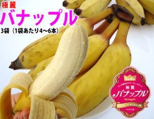 送料無料¥2,500テレビ番組で話題沸騰!まるでりんごのよう!?フルーティーなデザート系バナナ...