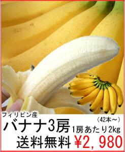 送料無料¥2,980朝食やスポーツ時等様々な生活シーンで大活躍♪弊社独自のノウハウを詰め込んだ...