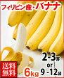 フィリピン産バナナ6kg送料無料¥2,980