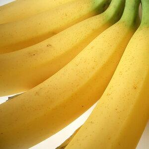 フィリピン産バナナ2kg箱送料無料¥1,980北海道・沖縄は別途送料¥1,000がかかります。