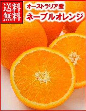 オーストラリア産ネーブルオレンジ大20玉
