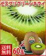 ゼスプリ・グリーンキウイフルーツ60玉