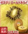 9月1日キウイの日特別企画ゼスプリ・ゴールドキウイフルーツ大18-22玉3kg箱