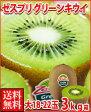 ゼスプリ・グリーンキウイフルーツ大18-22玉3kg箱