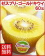 ゼスプリ・ゴールドキウイフルーツ60玉