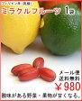 ミラクルフルーツ1袋(5粒入)送料無料¥980メール便