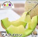 【送料無料】静岡産マスクメロン 1玉ギフト箱 (中玉) 1