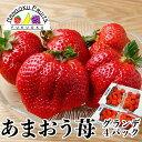 【予約販売・送料無料】福岡産 あまおう苺 グランデ 4パック