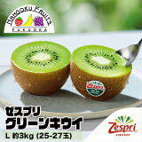 【送料無料】ゼスプリ・グリーンキウイL 約3kg(25-27玉)