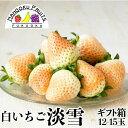 【予約販売・送料無料】福岡・佐賀産 白いちご淡雪ギフト箱(1
