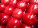 【母の日におススメ♪】長野産さくらんぼ香夏錦(こうかにしき)300gギフト箱かわいい真っ赤な果実食べる宝石化粧箱