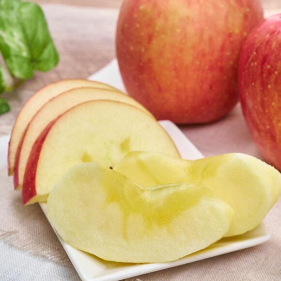全商品一覧>りんご>リンゴ複数>林檎(りんご)