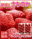 お歳暮ギフト米倉さんの朝採り完熟さちのか2パック送料無料¥3,980