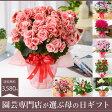 園芸専門店が選ぶ母の日ギフト・アジサイ・胡蝶蘭などめずらしい季節の鉢花B