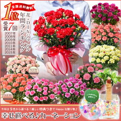 【母の日ギフト】幸せ特典付きカーネーション鉢植えギフト!ハッピーサプライズカーネーション