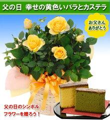 【送料無料】父の日のシンボルフラワーを贈ろう!【父の日ギフト】幸せの黄色いバラ鉢植えとカ...