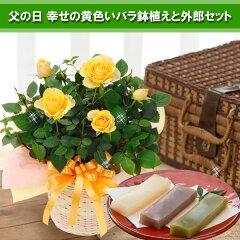 【送料無料】父の日のシンボルフラワーを贈ろう!【父の日ギフト】幸せの黄色いバラ鉢植えと外...