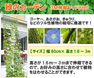 グリーンカーテンに挑戦しよう!エコ生活緑のカーテン【3M伸縮ワイド800】幅80cm×高さ1.6m〜3m...