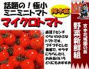 家庭菜園はじめませんか?甘くておいしいフルーツトマト極小ミニミニトマト【PDSG】【4月中旬以...