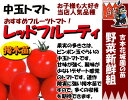 Tomato-t-05