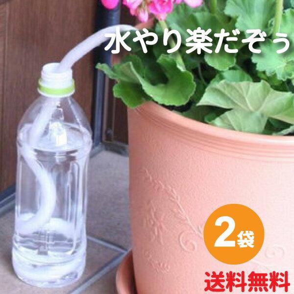 画像1: 【プランター菜園】プランターで手軽に野菜を栽培しよう! 色とりどりのベランダ菜園
