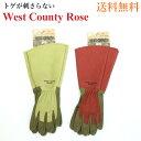 West County Rose (ウェストカウンティーローズ) 【メール便送料無料】 ルビー モス ウエストカウンティ