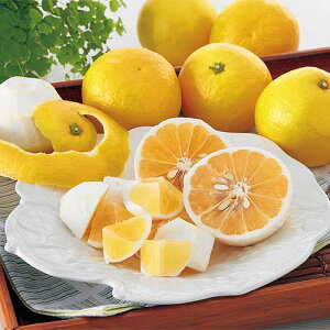 ニューサマーオレンジ(日向夏・小夏みかん)家庭用約3kg