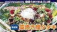 【送料無料】藁焼きトロかつおのタタキ(カツオのたたき)※代引・同梱不可