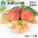 【指定日不可】桃 和歌山 訳あり 約2kg 5〜9玉 送料無...