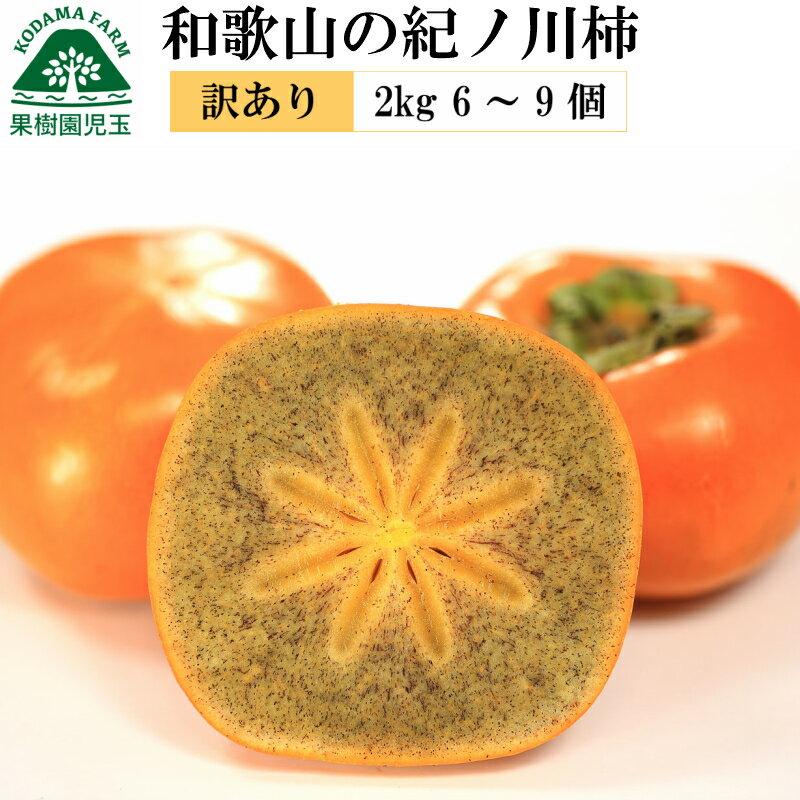フルーツ・果物, 柿  2kg 69