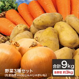 【あす楽対応】野菜3種セット(たまねぎ・にんじん・じゃがいも)各約3kg 合計9kg玉葱 人参 メークイン おうちごはん おうち時間 ご家庭用 大量 野菜