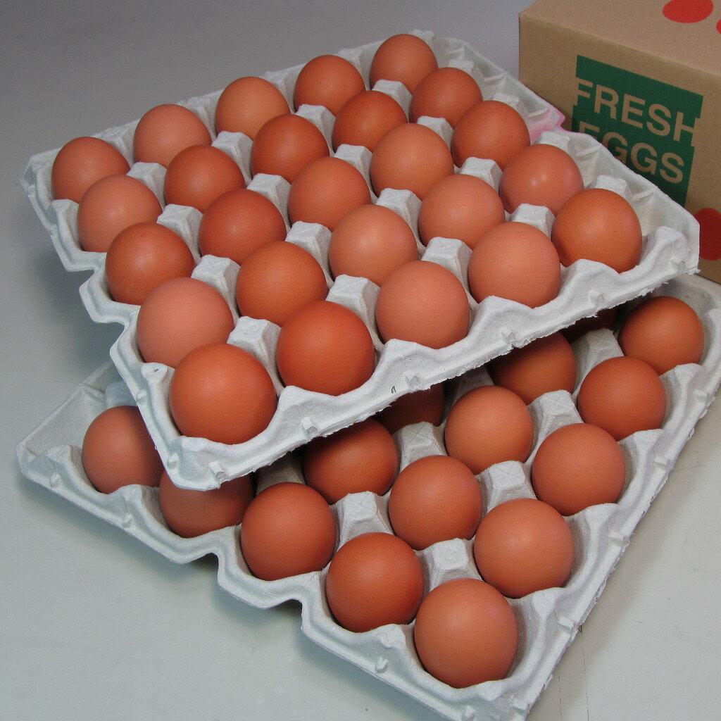 花たまご (50個) 一部地域を除き【送料無料】 卵 玉子 タマゴ たまご 鶏卵 赤殻 赤がら 新鮮 産みたて 産直 産地直送 Non-GMO ノンGMO ポストハーベストフリー PHF こだわりの飼料 安心 安全 卵かけごはん たまごかけごはん