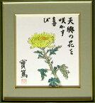 武者小路実篤 絵画(色紙額) 天與の花を咲かす喜び 送料無料