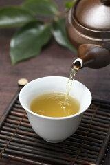 美容と健康に柿茶。30年以上も取引のある柿茶専用の農家さんが収穫。栽培〜生産まで一貫してい...