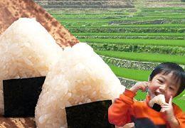 【米 お米】【送料無料】 ミルキークイーン 一合150グラム(150g)自然農法棚田米ミルキーク...