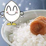 【送料無料】広島県産米コシヒカリ 一合(150g)白米/玄米選べますこしひかり/お一人様1回な...