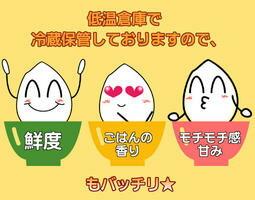 広島県産ミルキークイーン  20kg 5kg×4緑袋 玄米30年産1等米