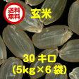 【ポイント10倍】【送料無料】島根県産コシヒカリ 30kg玄米(5kg×6袋)無地袋【28年産1等米】☆