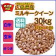 【ポイント10倍】【送料無料】広島県産ミルキークイーン 30kg(5kg×6袋)無地袋【28年産1等米】
