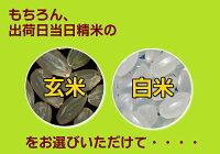 熊本県産森のくまさん2キロ<