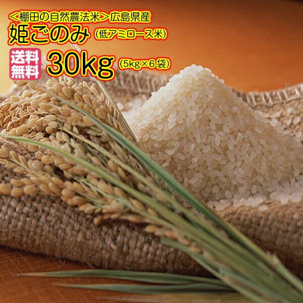 送料無料 広島県産姫ごのみ 30kg 5kg×6無地袋ミルキークイーンと同じ低アミロース種令和元年産 新米