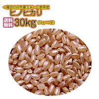 ヒノヒカリ30kg送料無料5kg×6袋広島県産検査済み1等米白米玄米