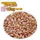 送料無料 広島県産コシヒカリ 10kg 5kg×2特別栽培米 ゴールド袋令和元年産1等米