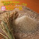 送料無料 福袋広島県産コシヒカリ 5kgとミルキークイーン 5kg= 10kg + 0.9kg増量で届け 令和元年産
