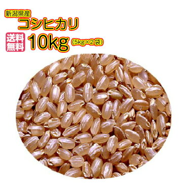 送料無料 新潟県産コシヒカリ 10kg 玄米 5kg×2袋 当店一流米 特A米 令和元年産新米