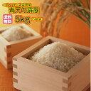 送料無料 青森県産 青天の霹靂 5kg 特A米令和元年産 新米1等米