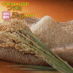 送料無料 島根県産つや姫 5kg 金の袋 奥出雲 つや姫 5kg 特別栽培米令和元年産 1等米