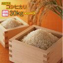 送料無料 鳥取県産コシヒカリ 30kg 5kg×6無地袋鳥取コシヒカリ 30kg 令和2年産 1等米